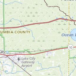 Osceola National Forest - Florida National Scenic Trail